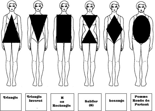 (Français) L'étude de silhouette ou morphologie